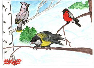 своим отменным рисунки на тему зимующие птицы жены приватизированную квартиру